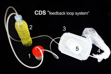 Andreas Ludwig Kalcker - CDS - Chlorindioxide as advanced solution