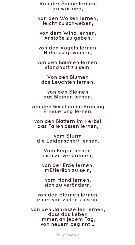 Wortschmid Adventskalender Acht Gedichte Und Sprüche