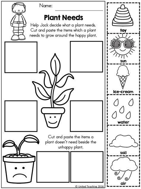 Pin By Beverley Farris On Plantas Kindergarten Science Science Worksheets Fairy Tale Activities