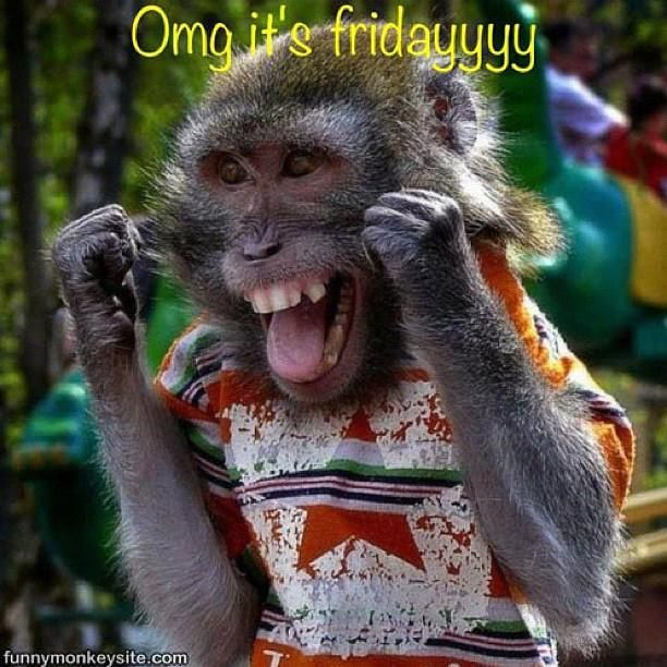 Everyone Loves Fridays! This Is A Collections Of Funny Pictures About The  Wonderful Day That Is Friday. So Start Your Weekend Off With A Few Laughs.