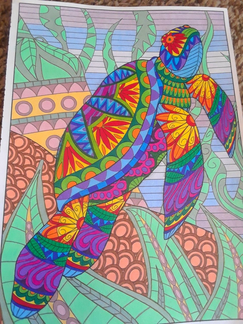 Timeless creations creatures of beauty by donna kay adult coloring pages coloring books