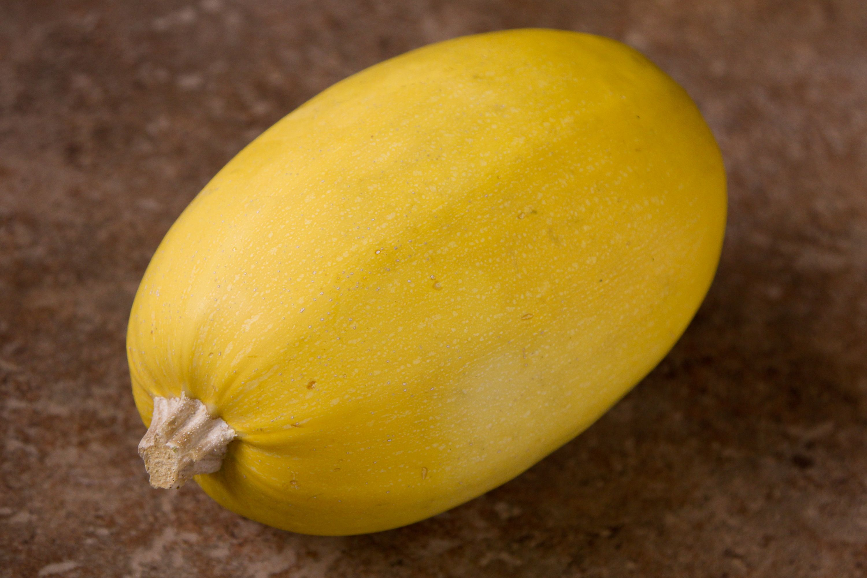 How To Tell When Spaghetti Squash Goes Bad Spaghetti Squash Spagetti Squash Squash