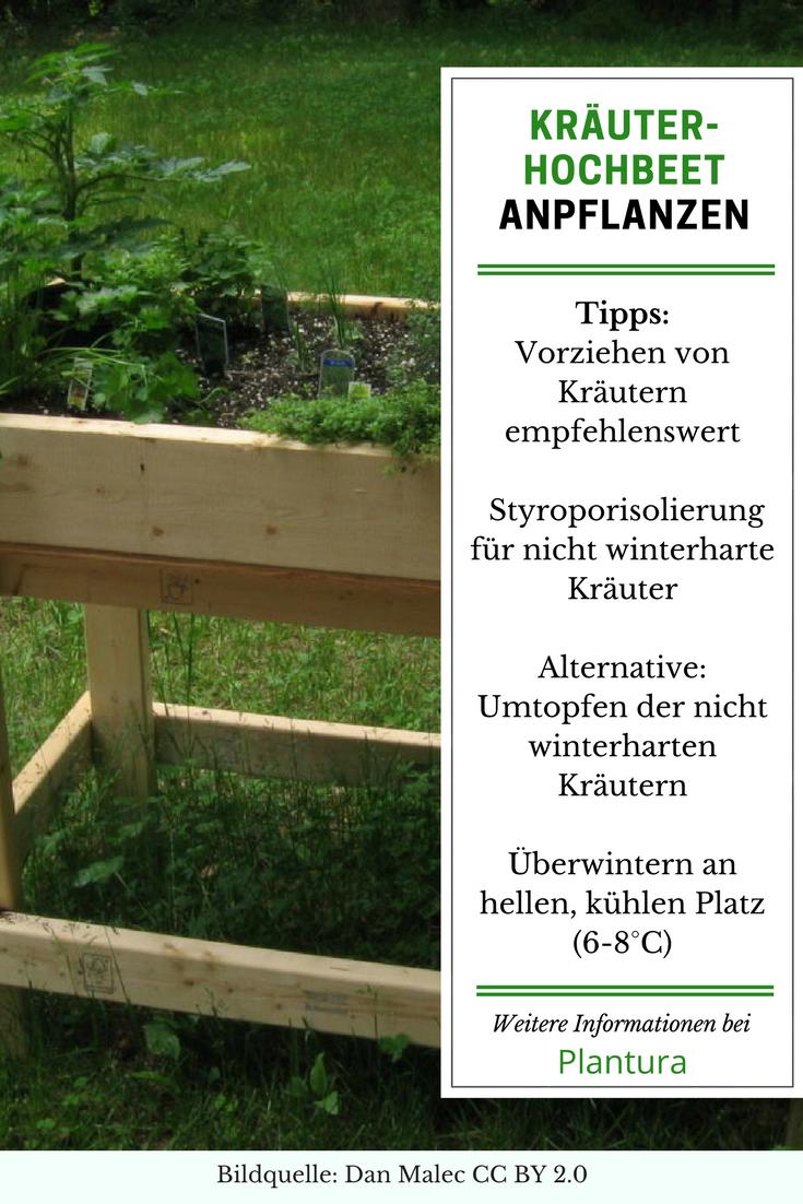 Kräuterhochbeet Bepflanzen leichtgemacht   Plantura   Hochbeet ...