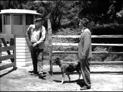 The Twilight Zone: The Hunt - Full Episode. A great story about a man and his dog trying to get into Heaven.