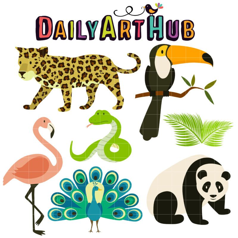 Tropical Rainforest Animals Clip Art Set Rainforest Animals
