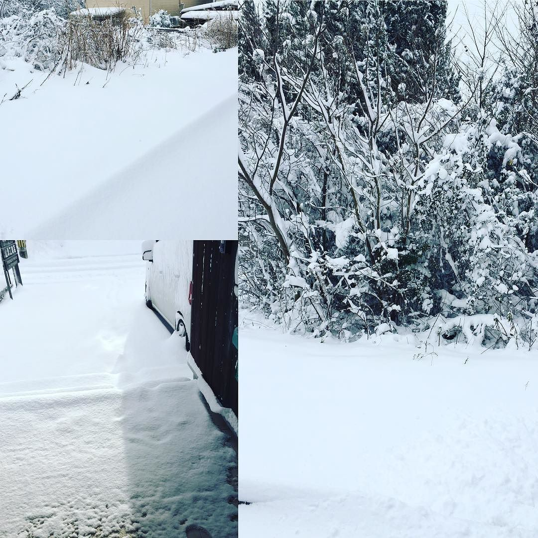 雪景色 #雪 #雪景色 #滋賀 #日野町 #雪合戦  #雪だるま