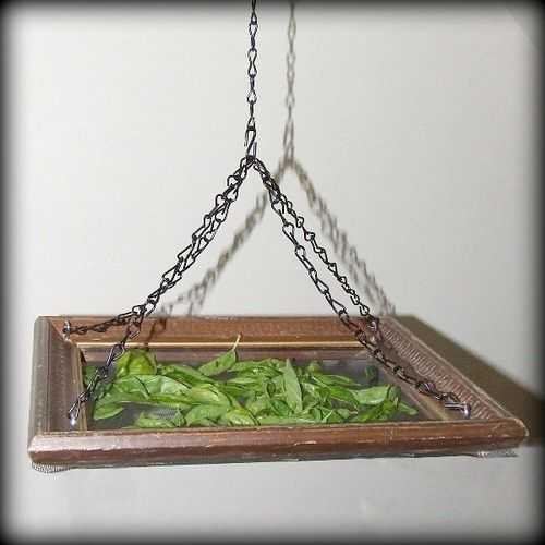 Make a Hanging Herb Drying Rack with a dollar store frame