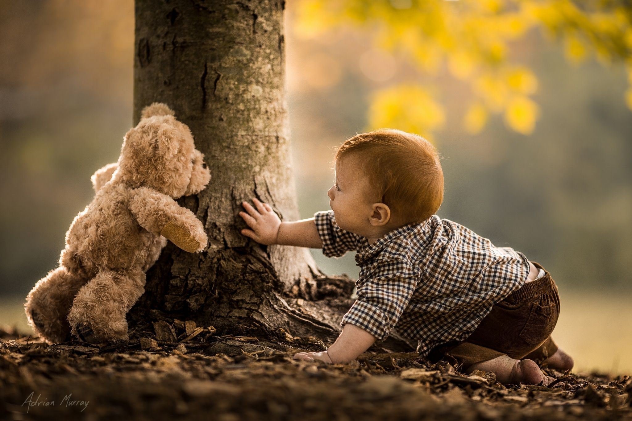 I've been away for a bit but that doesn't mean I've stopped taking photos! Here is our youngest playing hide and seek with our family teddy bear. :)  If you like my work you can follow me on Facebook at: www.facebook.com/adrianmurrayphotography  I'm on Twitter and Instagram as: adrmurray