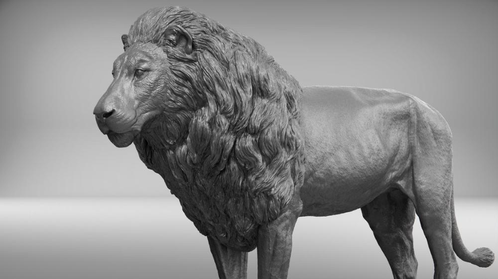 Lion realistic 3D TurboSquid 1290876 in 2020 Lion