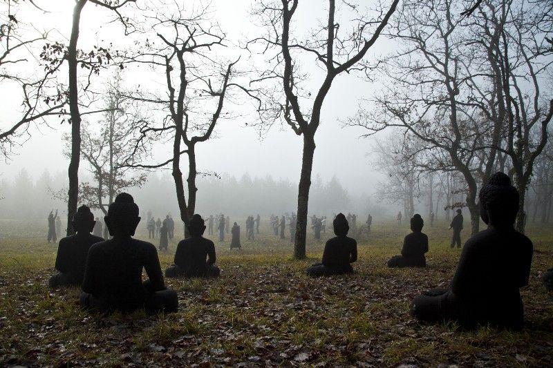 Beyond Zen - Katherine Anne Paul