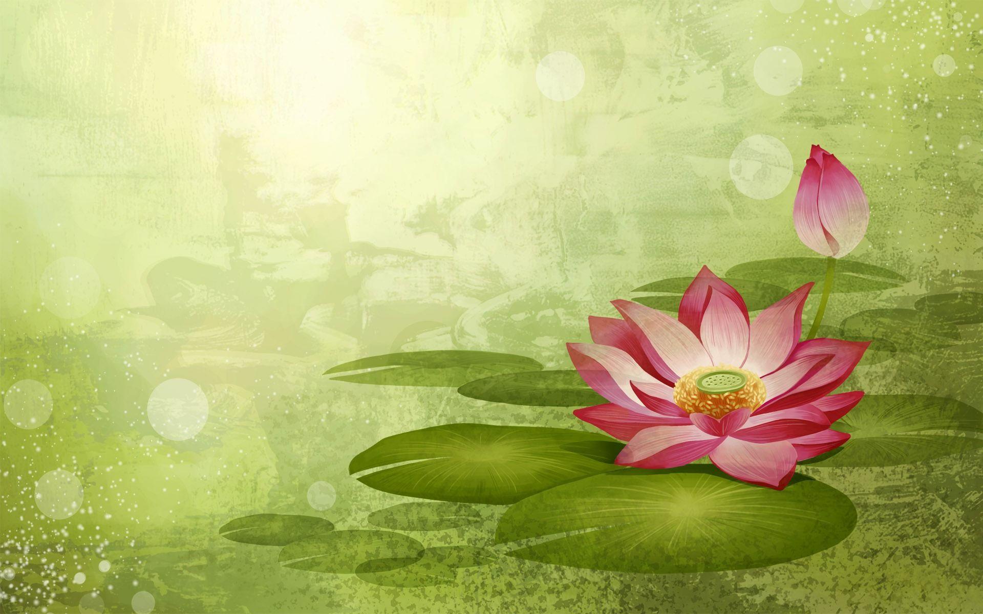 Pin by lyne sena on backgrounds pinterest flower backgrounds