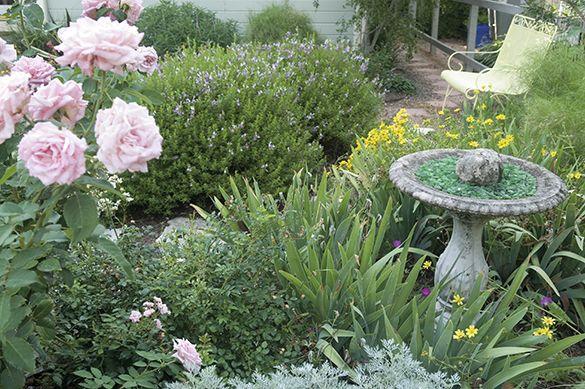 Plants · Southern Garden ...