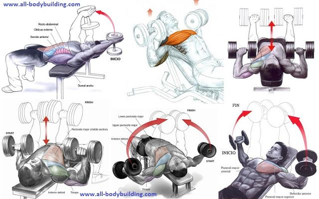 Here are a few of the more effective chest exercises using