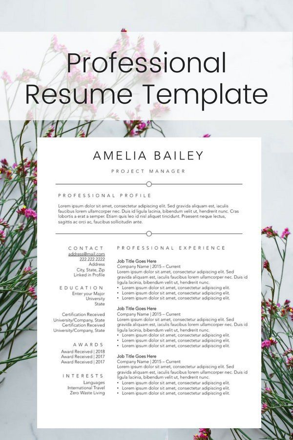 2 Page Resume Template Black and White Design Resume Builder for