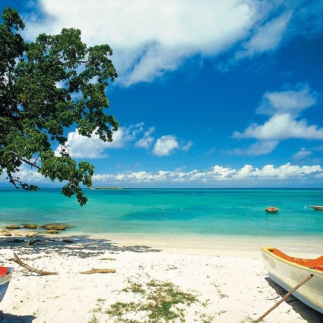 Guadeloupe Beach: Beaches In The World, Beach, Beautiful Places