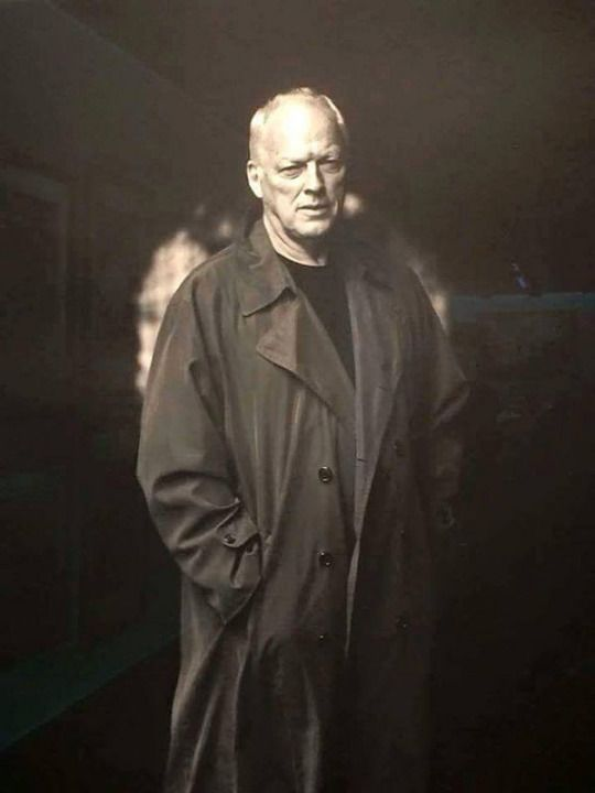 David Gilmour▲