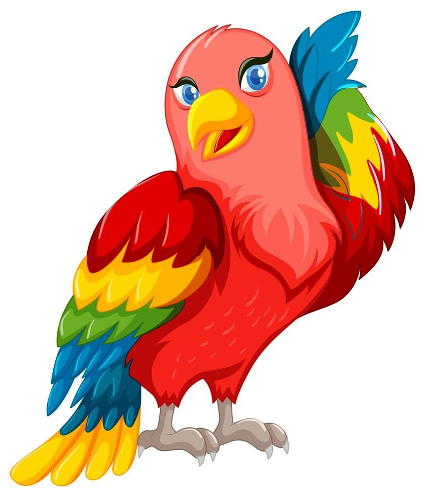 Beautiful Parrot With Colorful Wings Parrot Cartoon Pictures To Draw Animal Clipart
