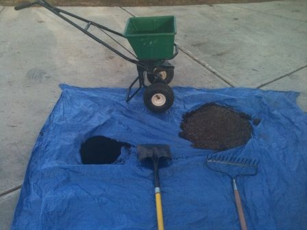 Lawn Fertilizer Can Be Made Ly And Easily From Used Coffee Grounds