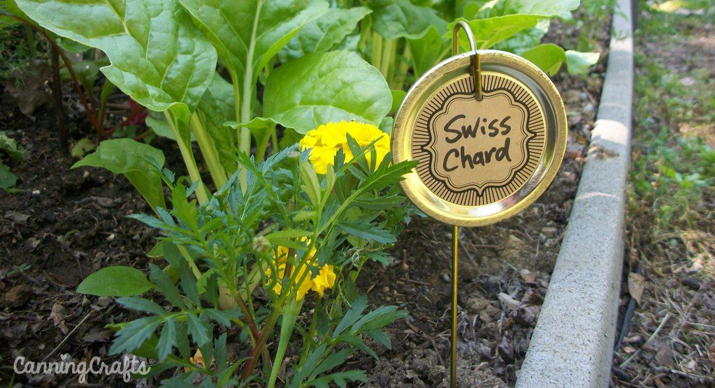 Diy garden markers with canning lids canning lids