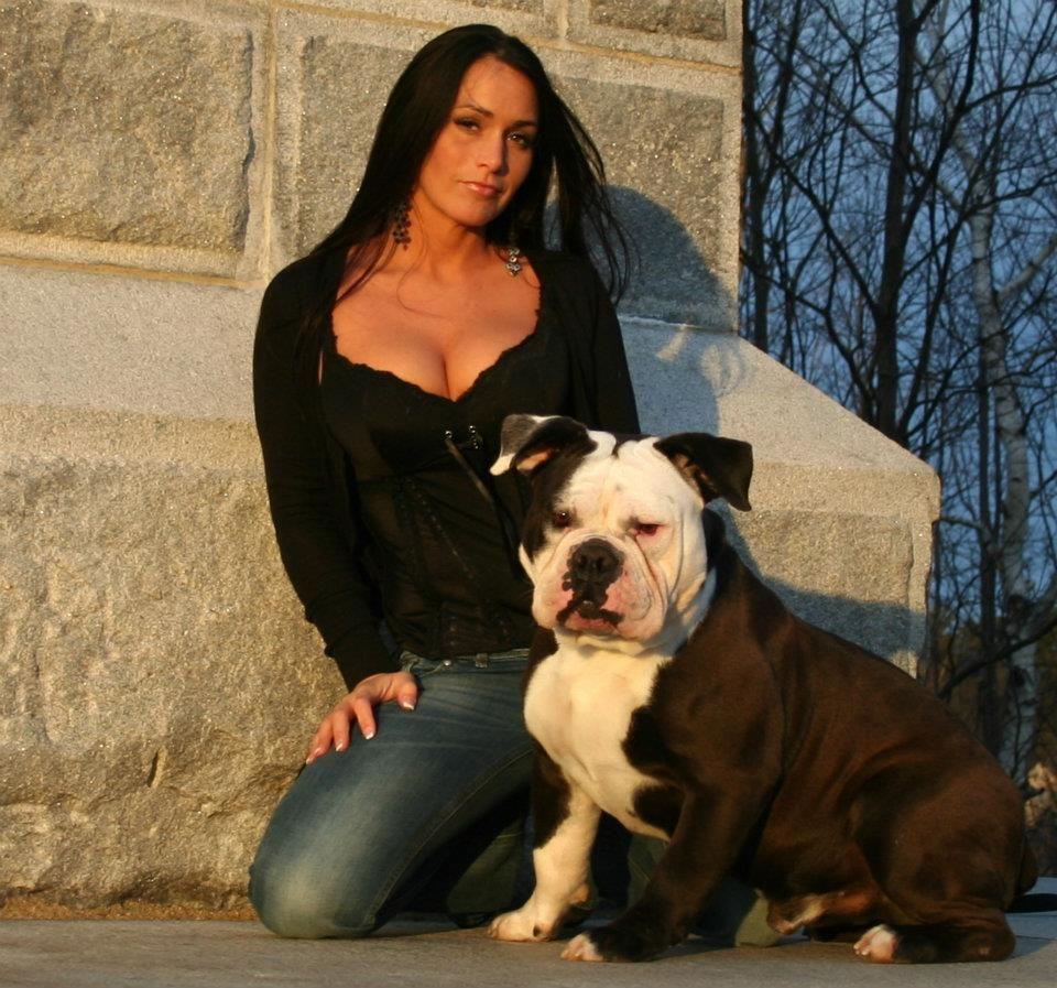 Facebook American dog, Dog breeder, Pets