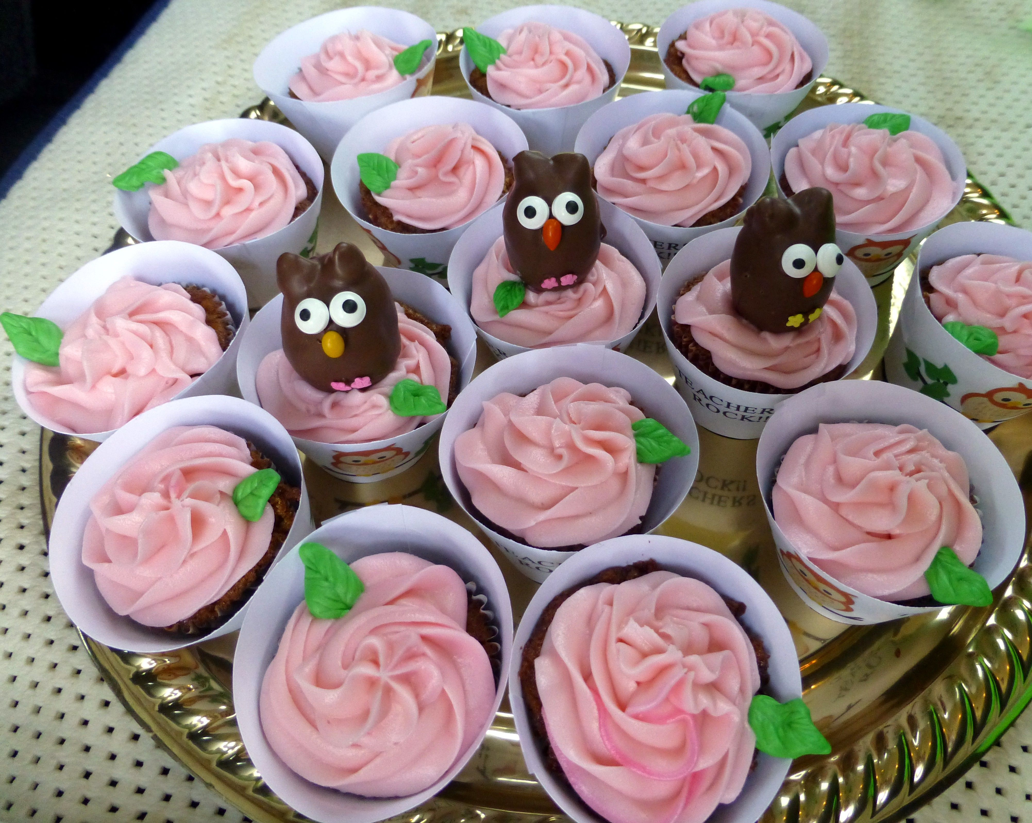 Rose Cupcakes with Owl Cake Pops -- April 2014
