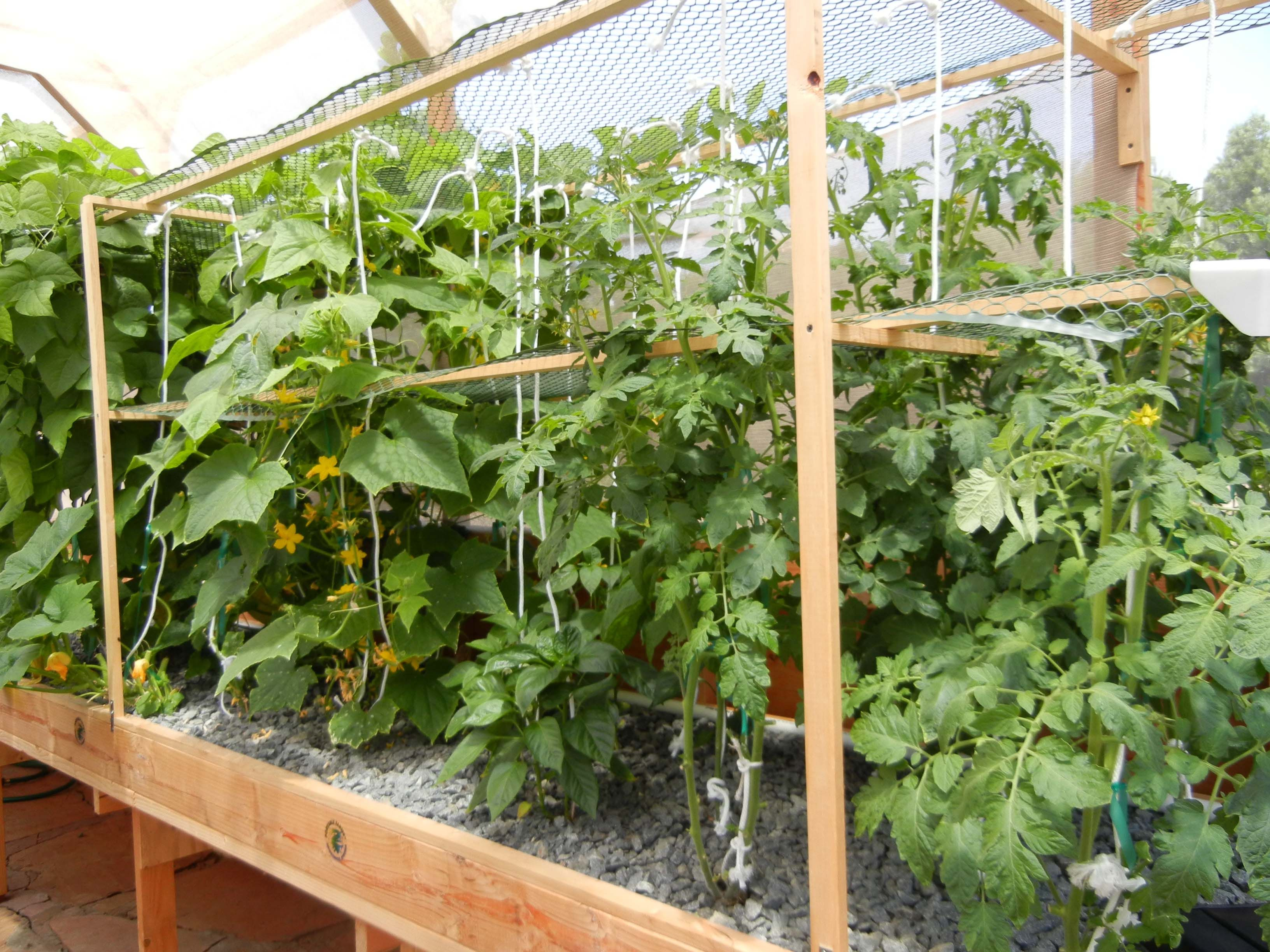 71 best aquaponics images on pinterest aquaponics system