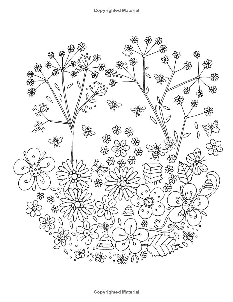 Bee Garden Colouring Book Amazoncouk De Ann Black