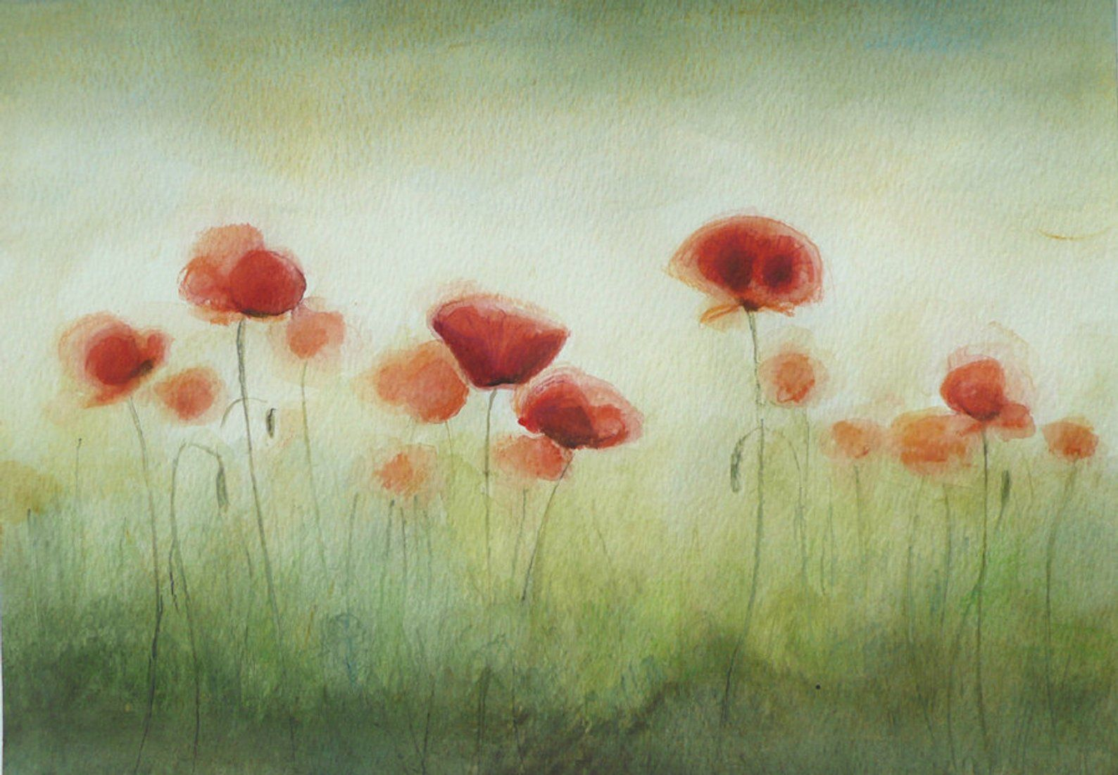 Red Poppies Watercolor Painting Red Wild Flowers Painting