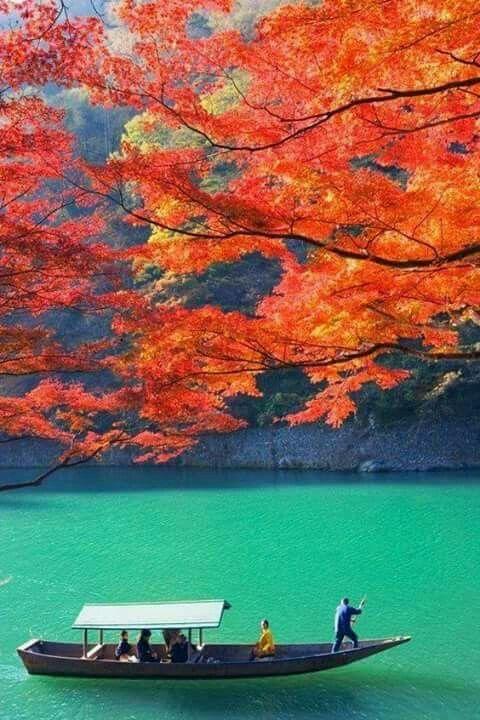 Bosque Arashyama