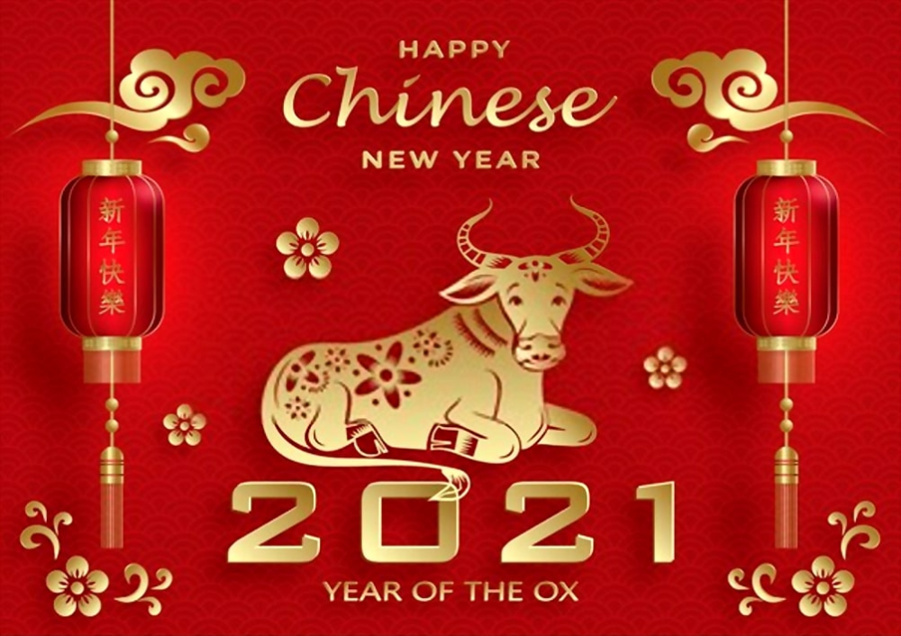 Chinese New Year 2021 Wallpaper Happy Year Of Ox 2021 Cow Bull In 2021 Chinese New Year Chinese New Year Images Chinese New Year Wallpaper