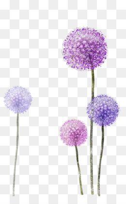 Purple Watercolor Flower Png Download 3189 4961 Free Transparent Common Dandelion Png Download Bunga Cat Air Kreatif Bunga