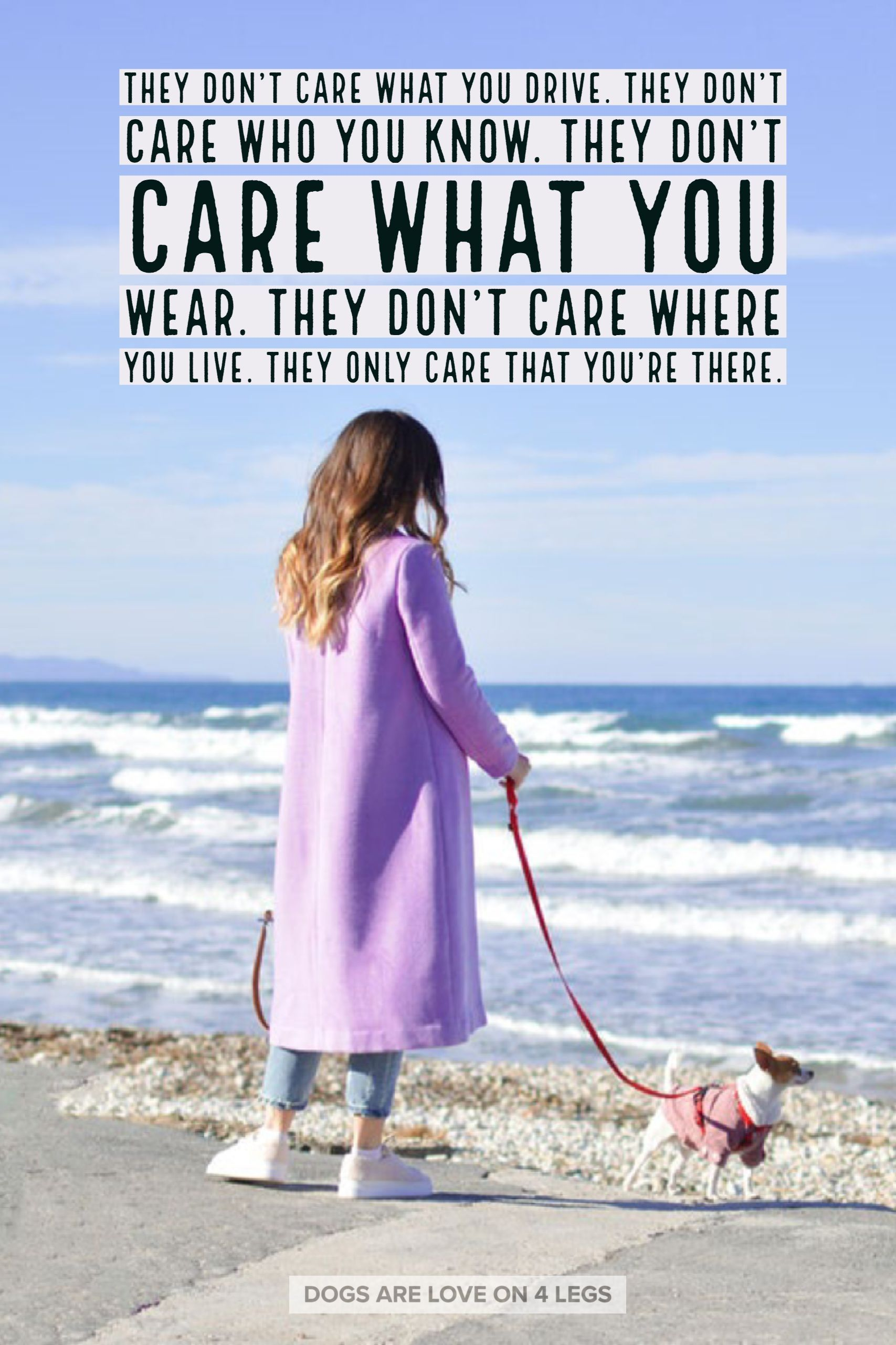 Dog Quote They Don T Care What You Drive They Don T Care Who You Know Dog Dog Quotes Inspirational Dog Quotes Dog Quotes Funny Dog Quotes Inspirational
