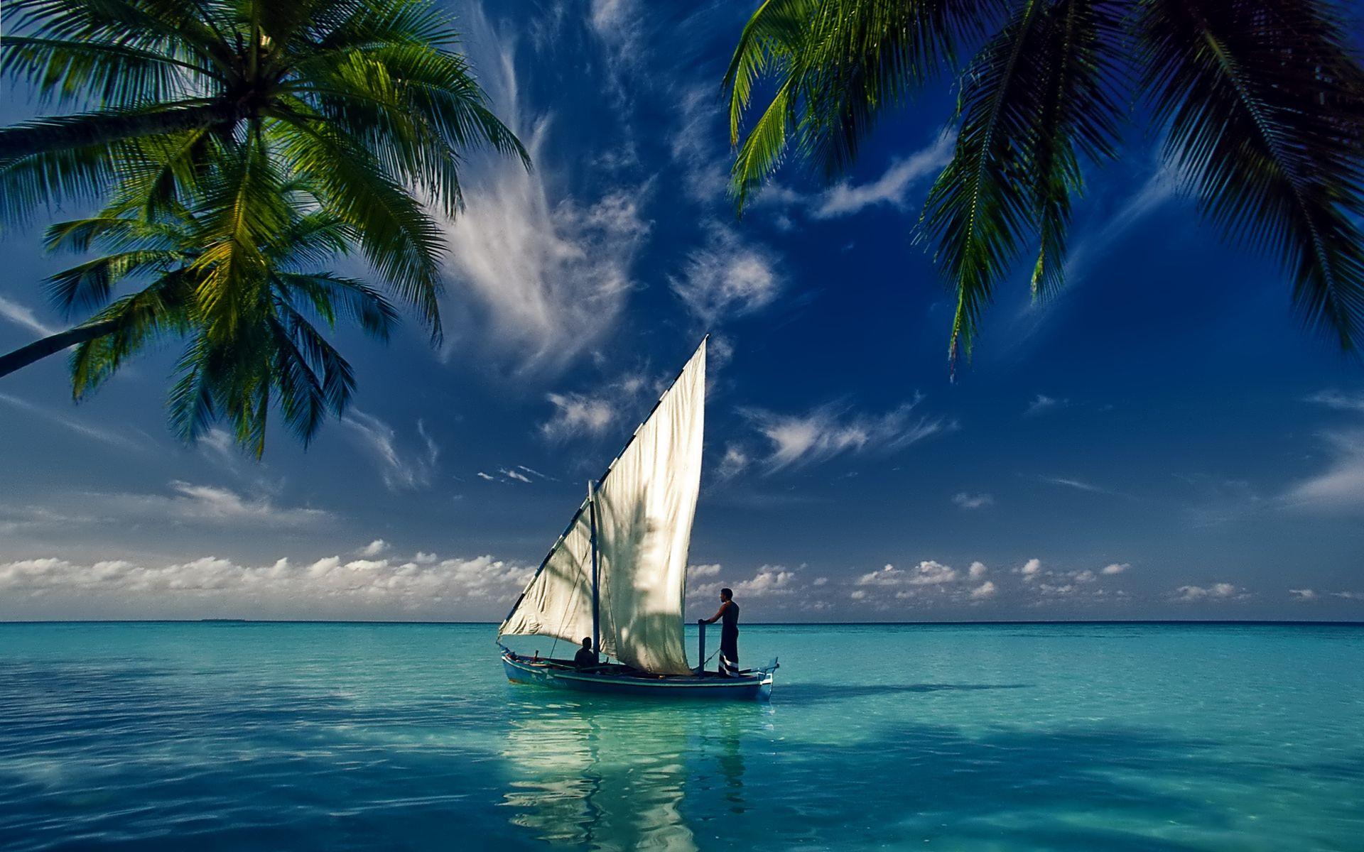 Sailboats Wide Desktop Background wallpaper free Sailing