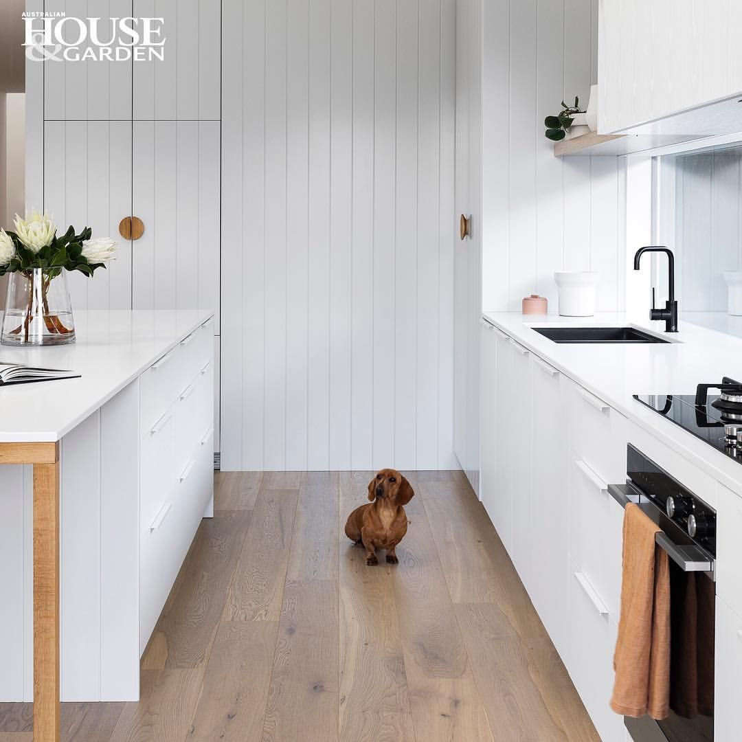 A 1100mm Distance Between Island And Workbench Is Ample And Dachshund Monty Agrees Designed By Hea Kitchen Styling Kitchen Renovation Interior Design Kitchen