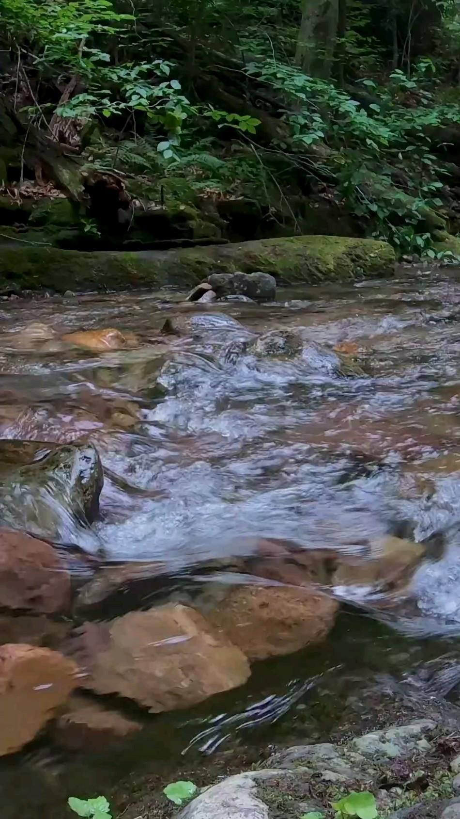 Put your headphones on and listen to the nature sound��