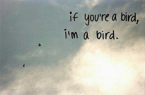 If you're a bird, I'm a bird. ♥