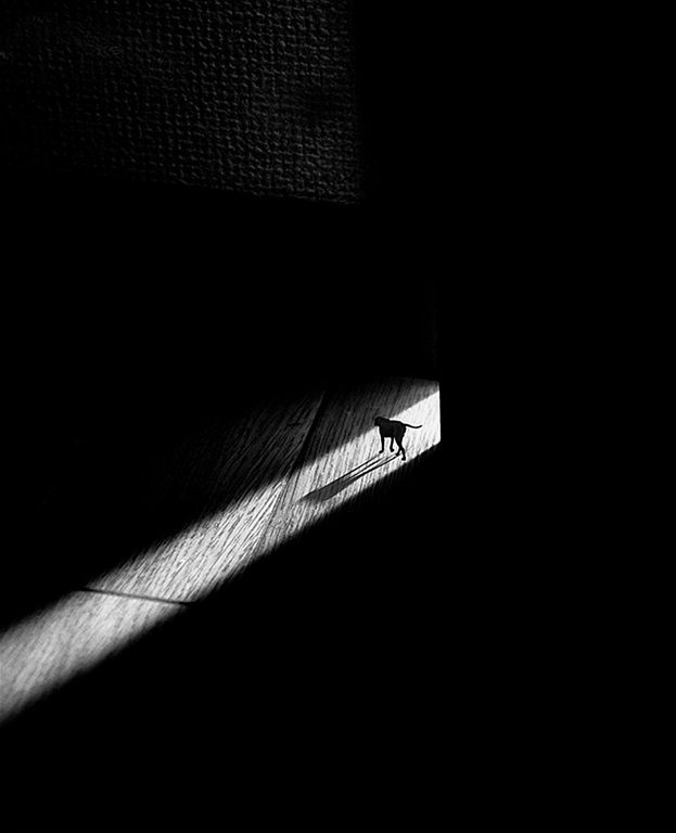 A walk of darkness