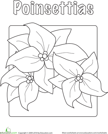 Poinsettia Coloring Page Noche Buena Christmas Coloring