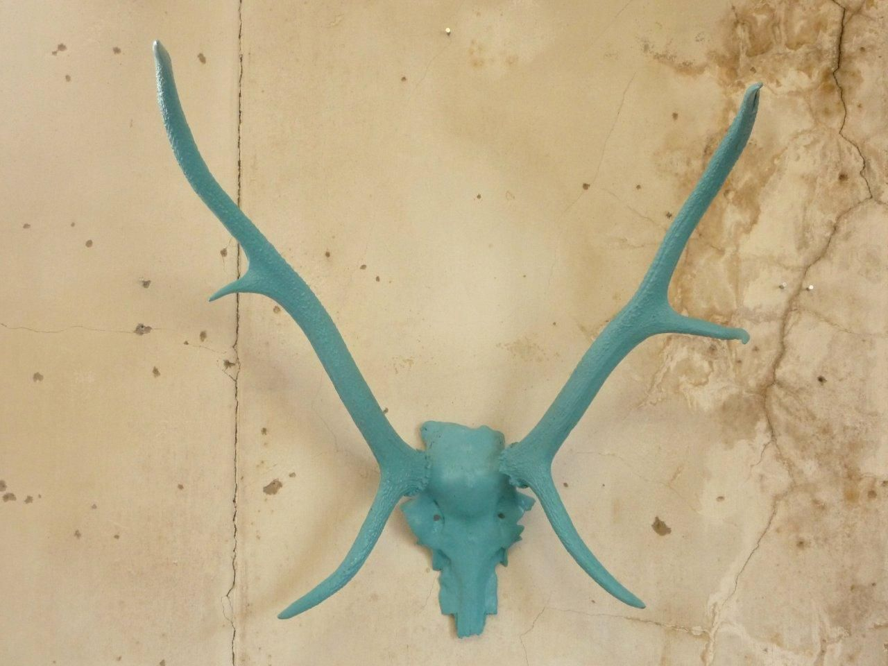 Deer Antlers Sobeitstudio Com Cast From A Specimen In Our Collection Available In A Natural Patina Or Any Other Colour You Can Deer Antlers Antlers It Cast