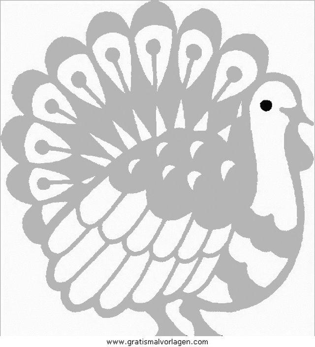 verschiedene_vogel_152 in tiere gratis malvorlagen