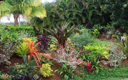 Tropical Backyard Landscaping Ideas   Best Home Design, Room .