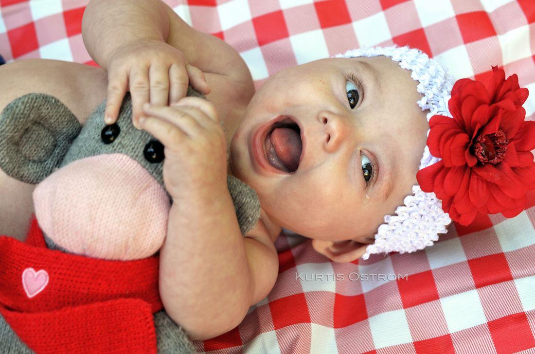 Baby Dahlia - KURTIS OSTROM PHOTOGRAPHY