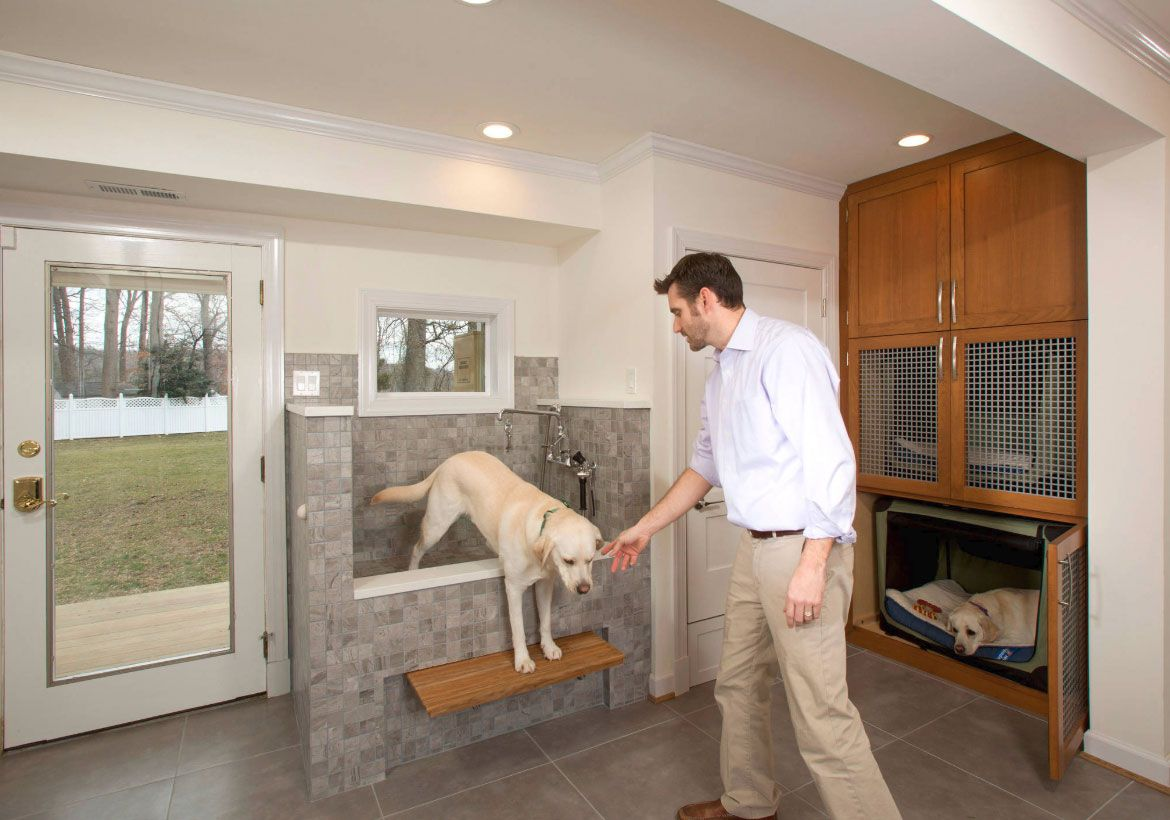 Outstanding Dog Shower Ideas & Pet Washing Stations images