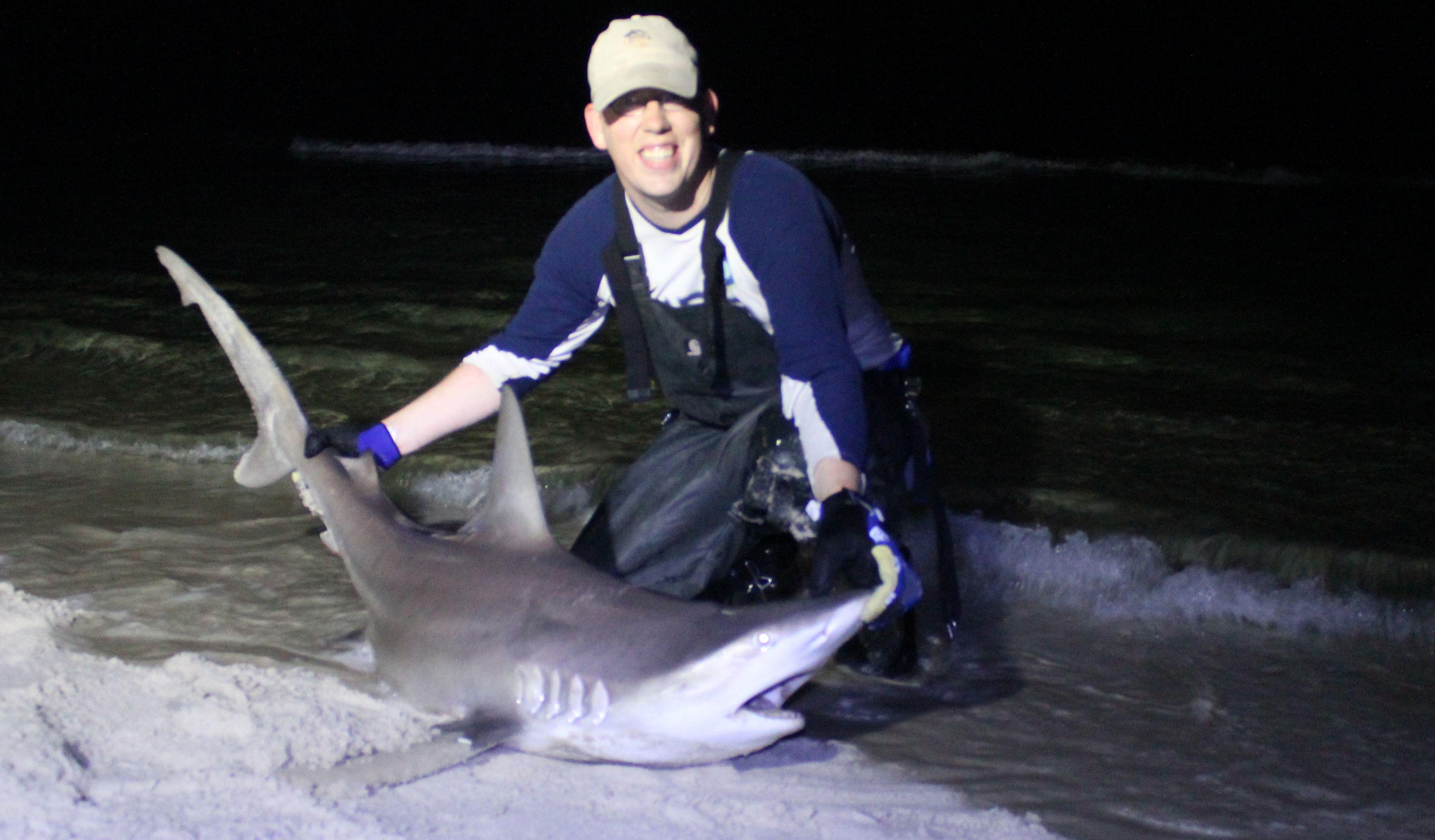 Another Great Spinner Shark From Panama City Beach Florida Shark Fishing Panama City Beach Panama City Panama