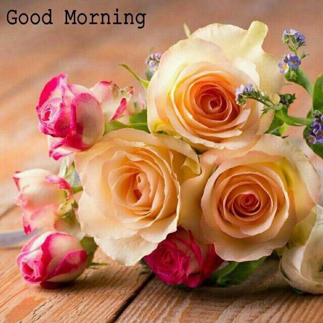 Pin By Nda Madlala On Morning Dawns Pinterest Morning Greetings