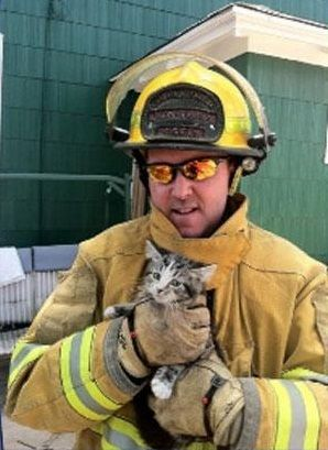 Firemen Going To Great Lengths To Save Cats Baby Cats Cute Cats