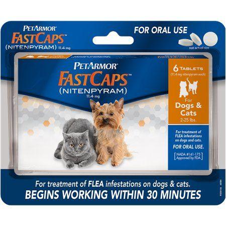 Petarmor Fastcaps Nitenpyram Oral Flea Medication 2 25 Lbs 6 Ct Cat Fleas Flea Medicine For Cats Flea Treatment