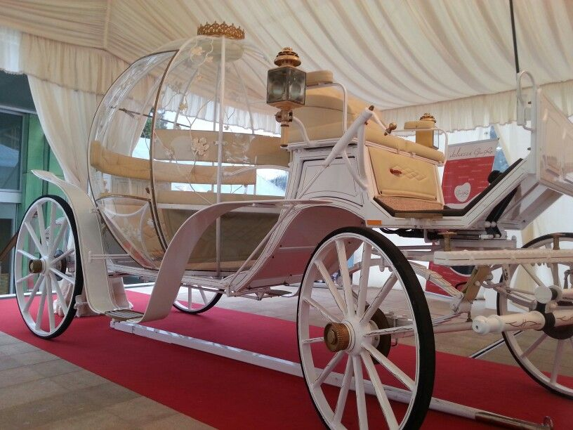 A #fairytale #carriage could be a #romantic idea for your perfect day!
