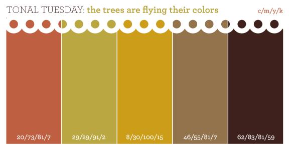 Brown Color Schemes color pallet   decor for new casa!!!   pinterest   color pallets