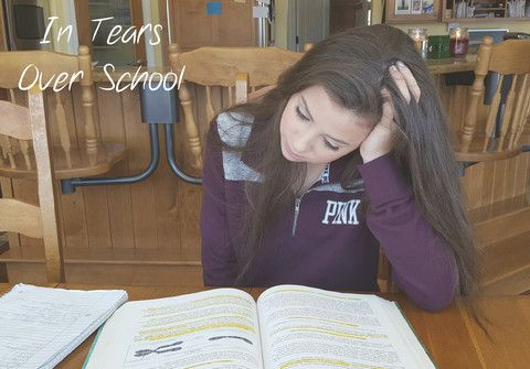 """""""In Tears Over School"""" It was when she started doing middle school and then high school level work that she and I both noticed that is was more difficult for her to retain all the information. This mostly was with subjects like science and history, where there is much reading, discussion, and retaining facts. – Yellow House Book Rental"""